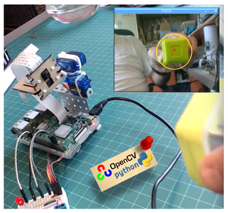 Automatic Vision Object Tracking
