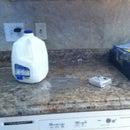 Klondike Milkshake (No Blender!)