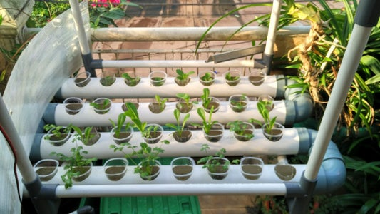 Solar-powered Hydroponic Water Circulation