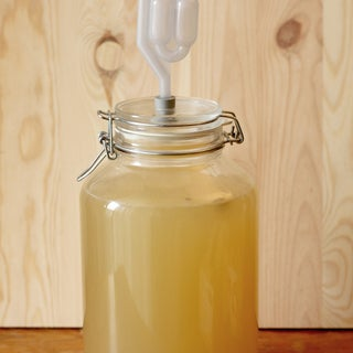 Glass Anaerobic Fermentation Vessel