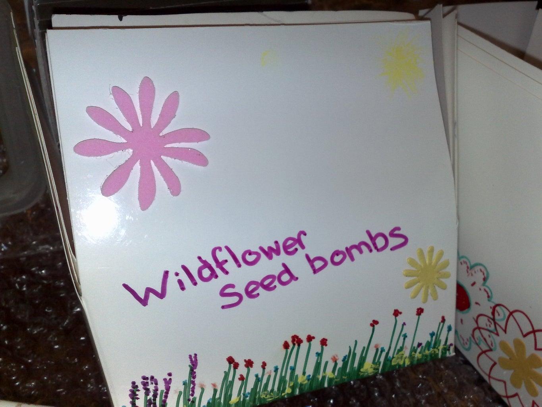 Purrfect Seedbombs