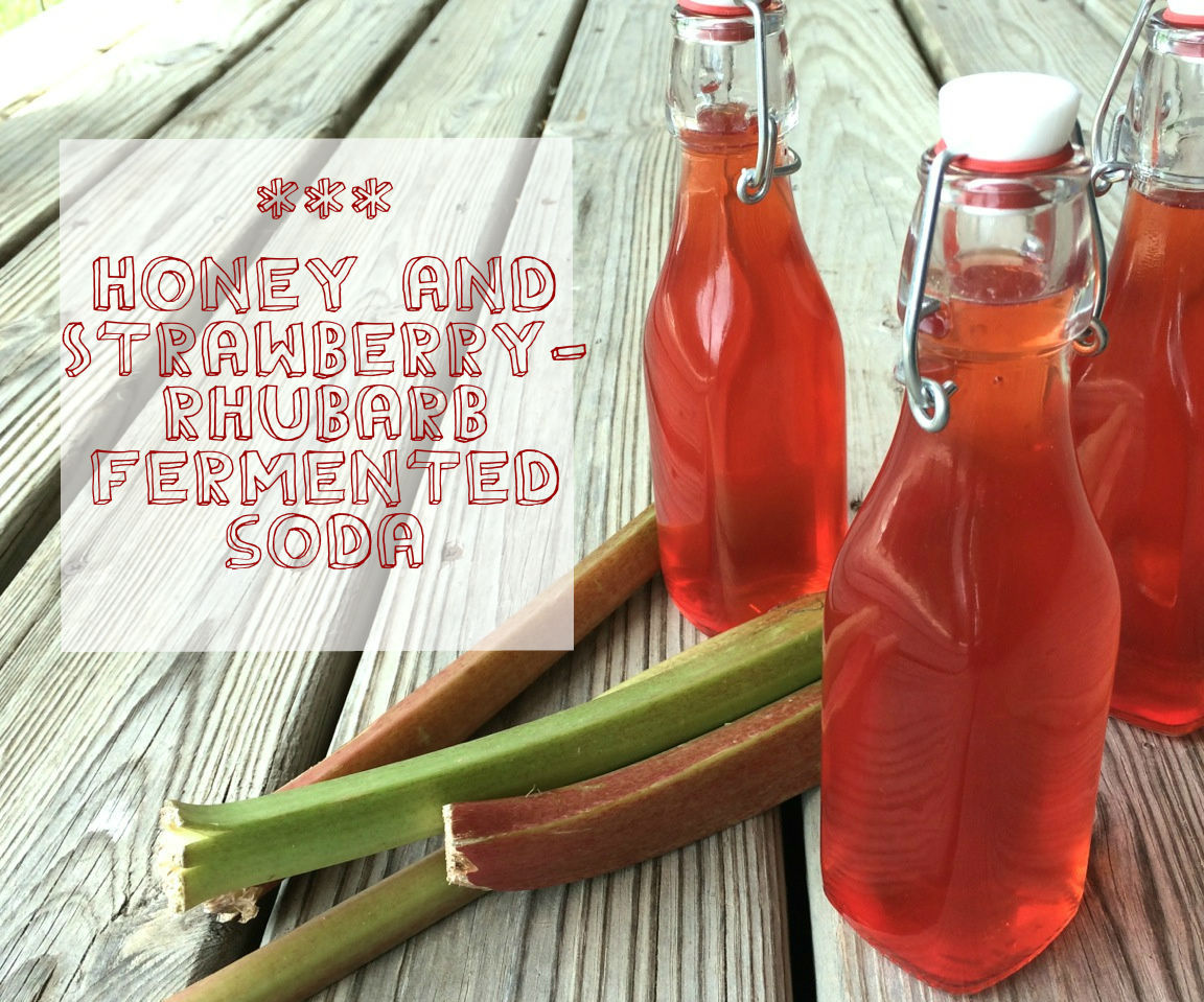 Honey & Strawberry-Rhubarb Fermented Soda