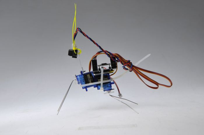 Insect Bot mini