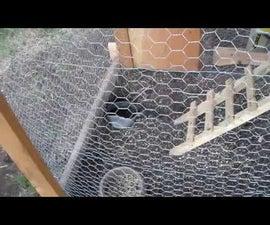 DIY Chicken Tractor Plans