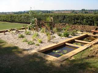 Hydroponic Bog Garden (Water Recycling)