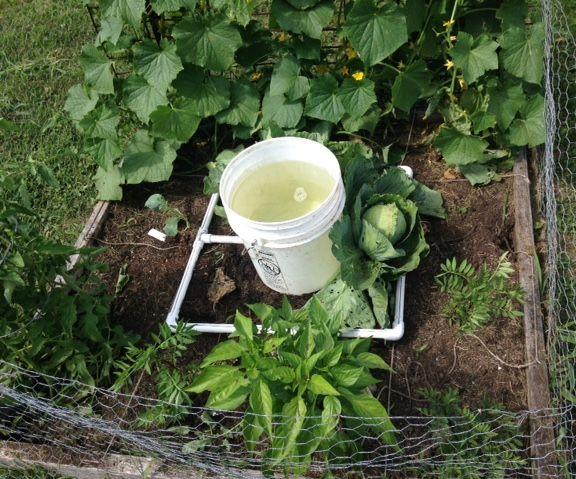 Square Foot Gardening Waterer
