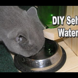 DIY Self Watering Dog Dish