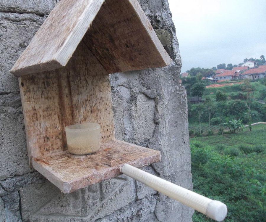 Simple Bird Feeding House