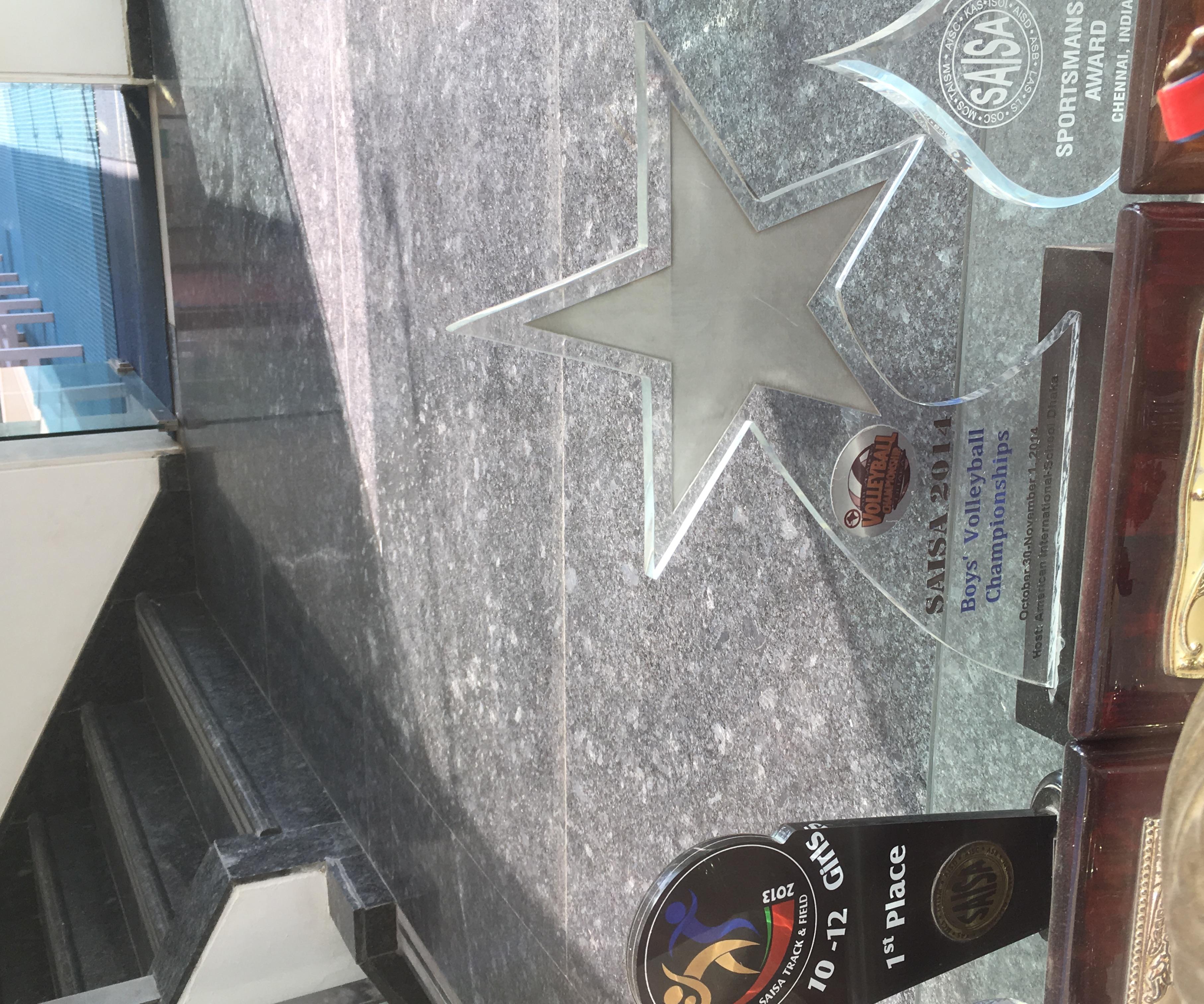 Hall of Fame Trophy Case