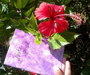 Natural Textured Book Covers- With Shoe Flowers
