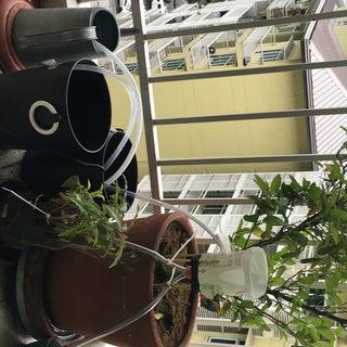 Raspberry Pi Irrigation Controller