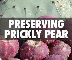 Preserving Prickly Pear