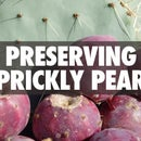 Preserving Prickly Pear