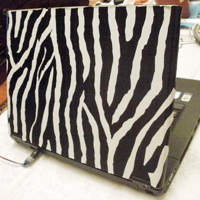 Duct Tape Laptop Skin