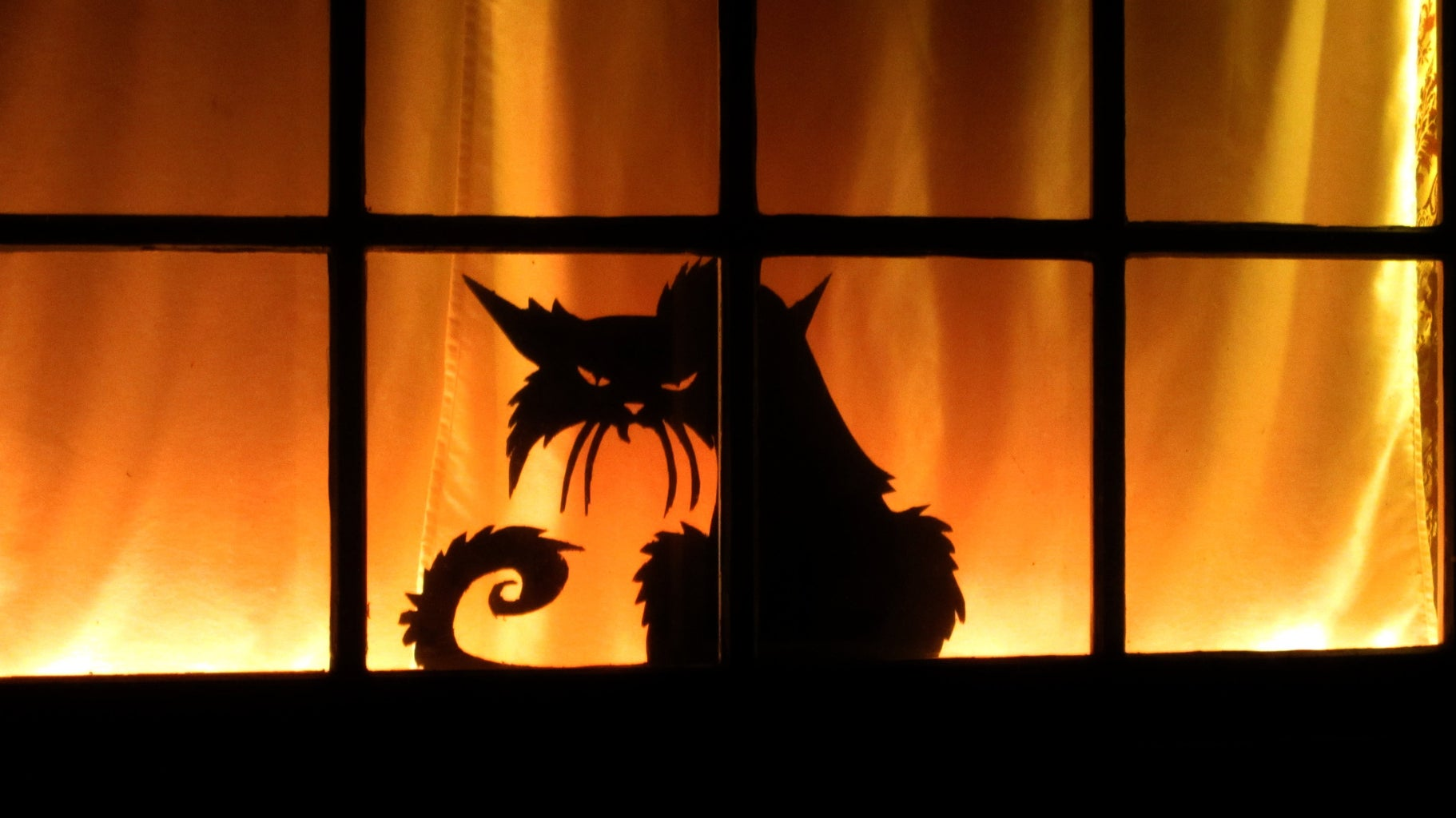 Mount the Silhouettes in the Windows of Your House