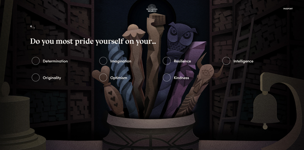 Discover Which Wand Will Choose You