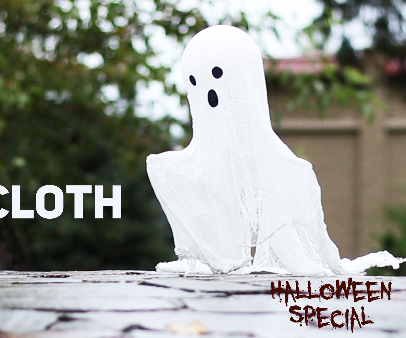 Cheesecloth Ghost / Halloween Special