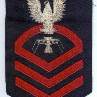 PT Insignia 1.jpg
