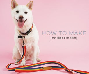 Collar + Leash