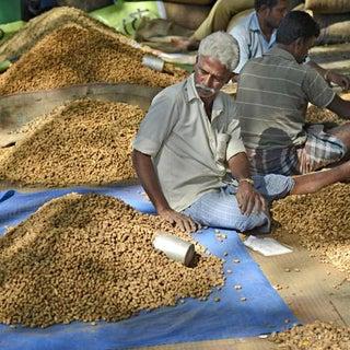 Bangalore_CITY__07_1292034g.jpg
