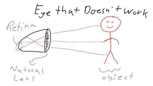 The Physics