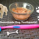 Homemade Toothpaste for Dogs!