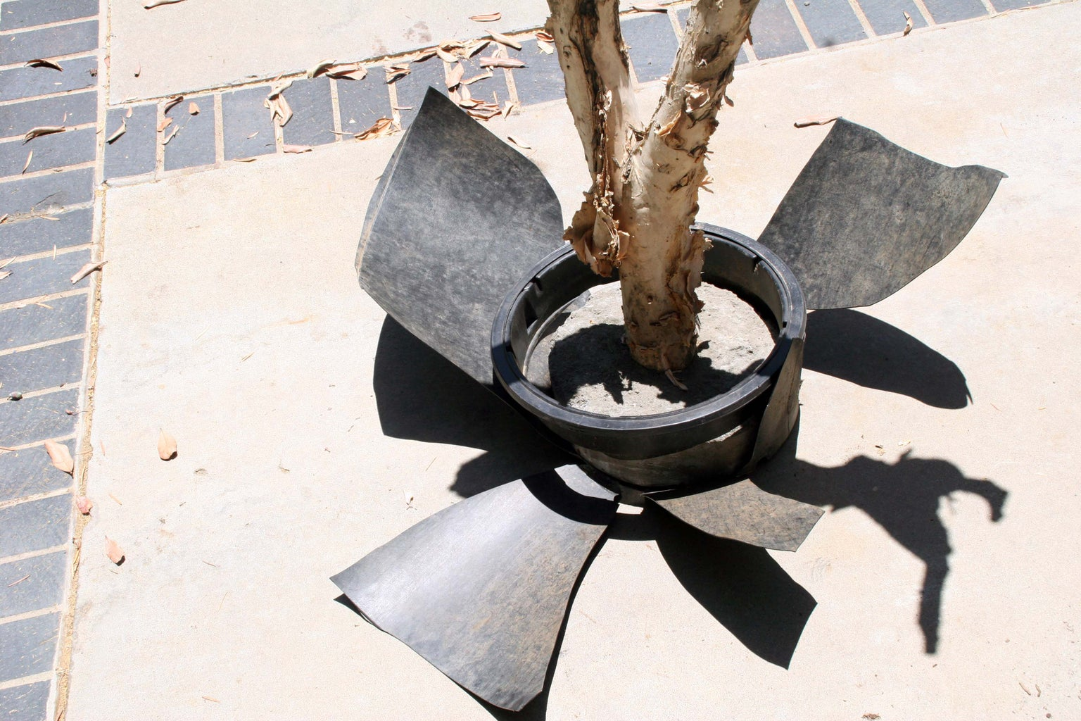 Remove the Branch From the Pot