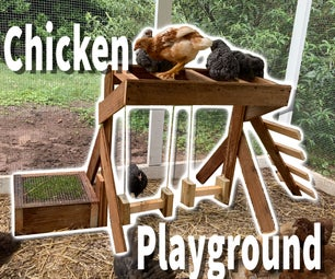 Chicken Playground