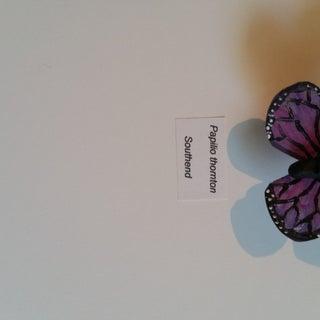 Bottle Butterflies!