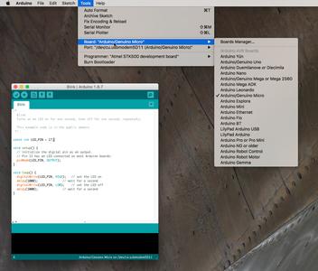 Programming Using the Arduino IDE