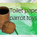 Toilet paper roll parrot toy