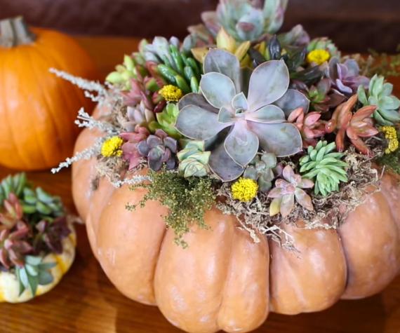 How to Create a Halloween Pumpkin Centerpiece