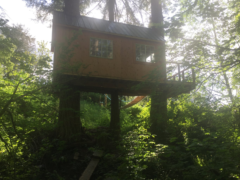 Outro: Treehouse