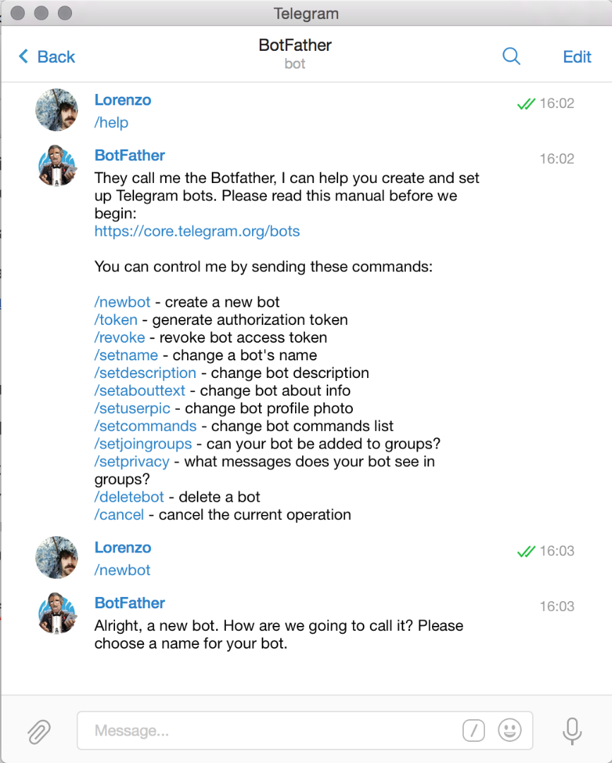 Setup a New Telegram Bot