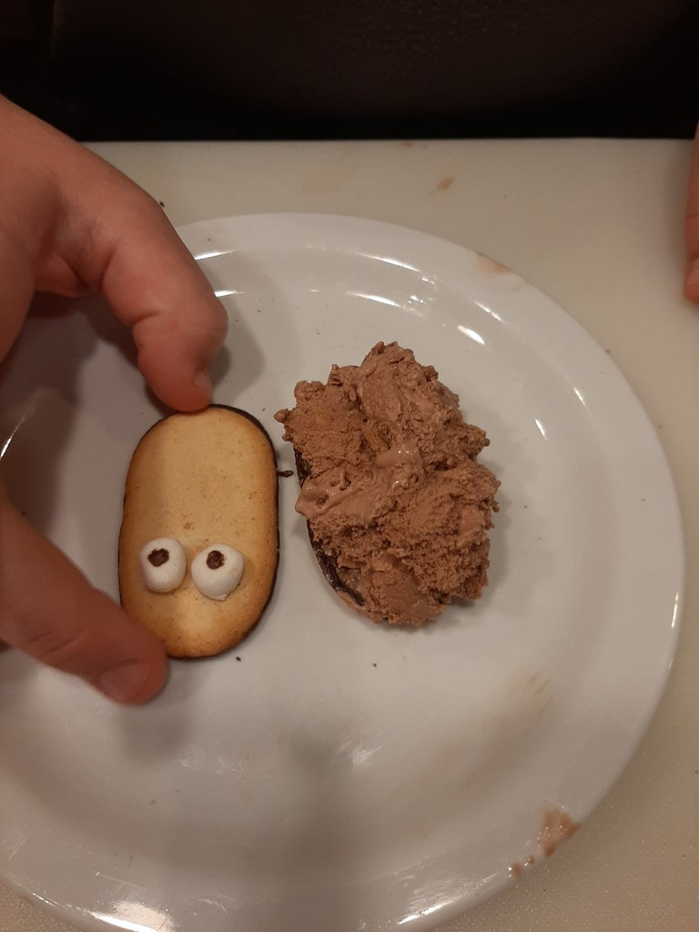 Put Ice Cream Between the Two Halves of the Milano Cookies. the Cookie That Has Eyes Should Be on Top.