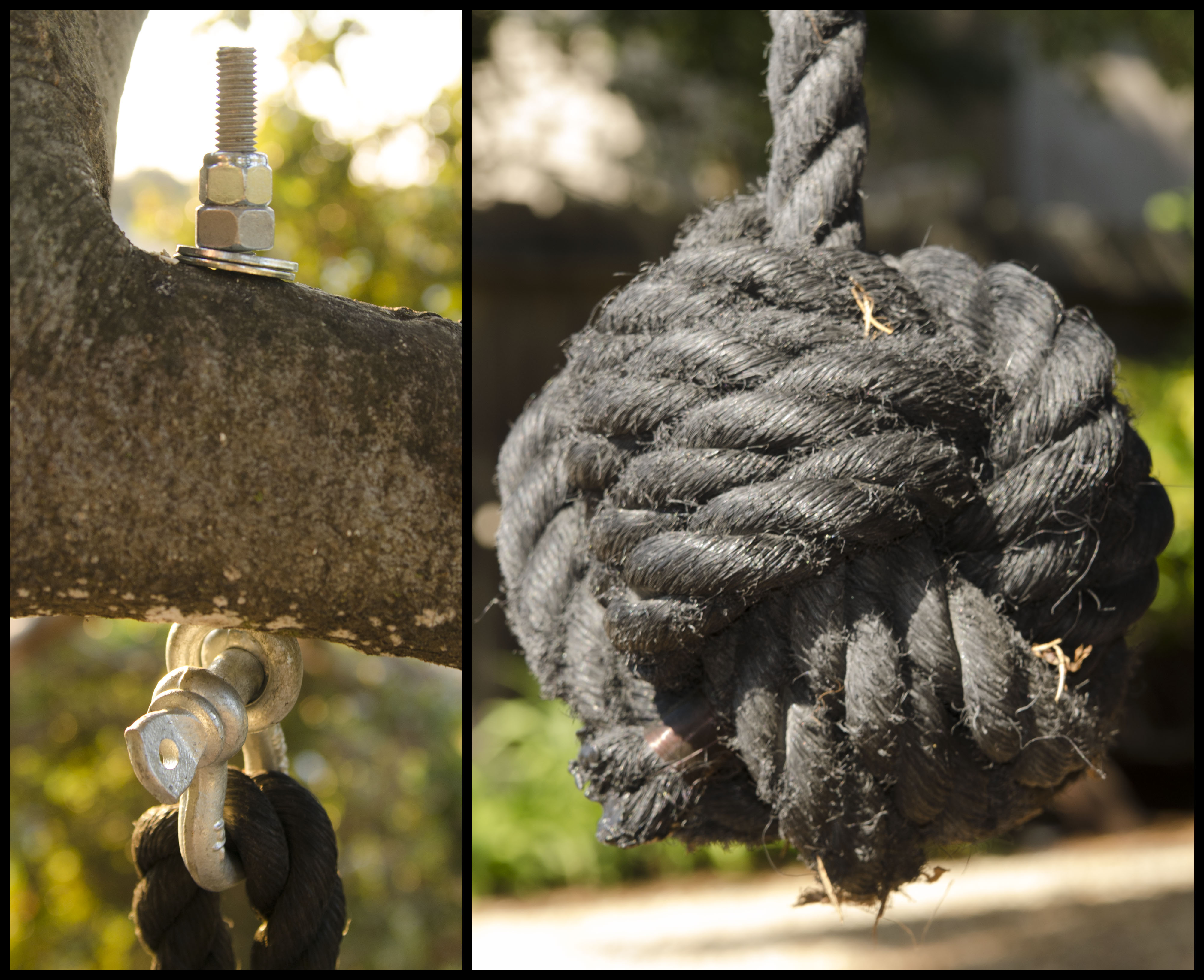 Rope Swing with Monkey's Fist