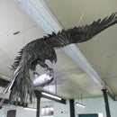 LIFE SIZE EAGLE IN STEEL