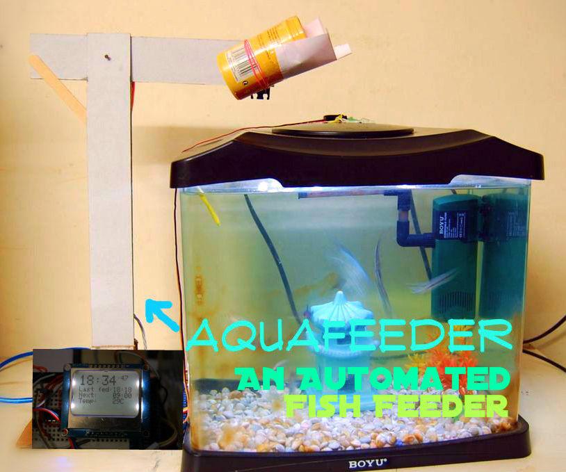 AquaFeeder: An Automated Fish Feeder