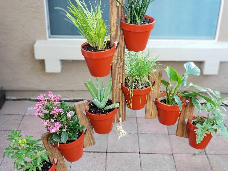 Hang and Add Plants - Finito!!!