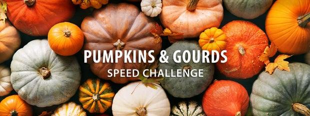 Pumpkins & Gourds Speed Challenge