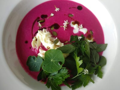 Versatile Uses of Beetroot I. / Cold Beet Soup With Yogurt and Herbs