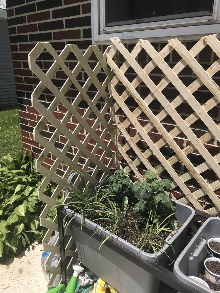Add Lattice Sheets to Sides and Back