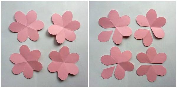 6 Petals