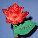 Blooming Rose - A Fruity Valentines (Plus bonus Rosebud version)