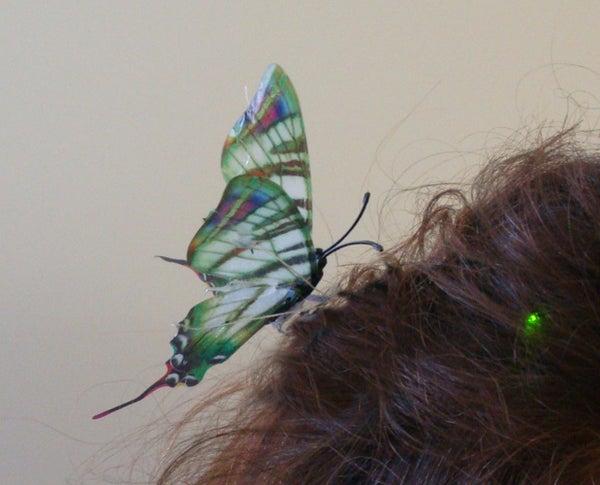 Wedding Butterfly