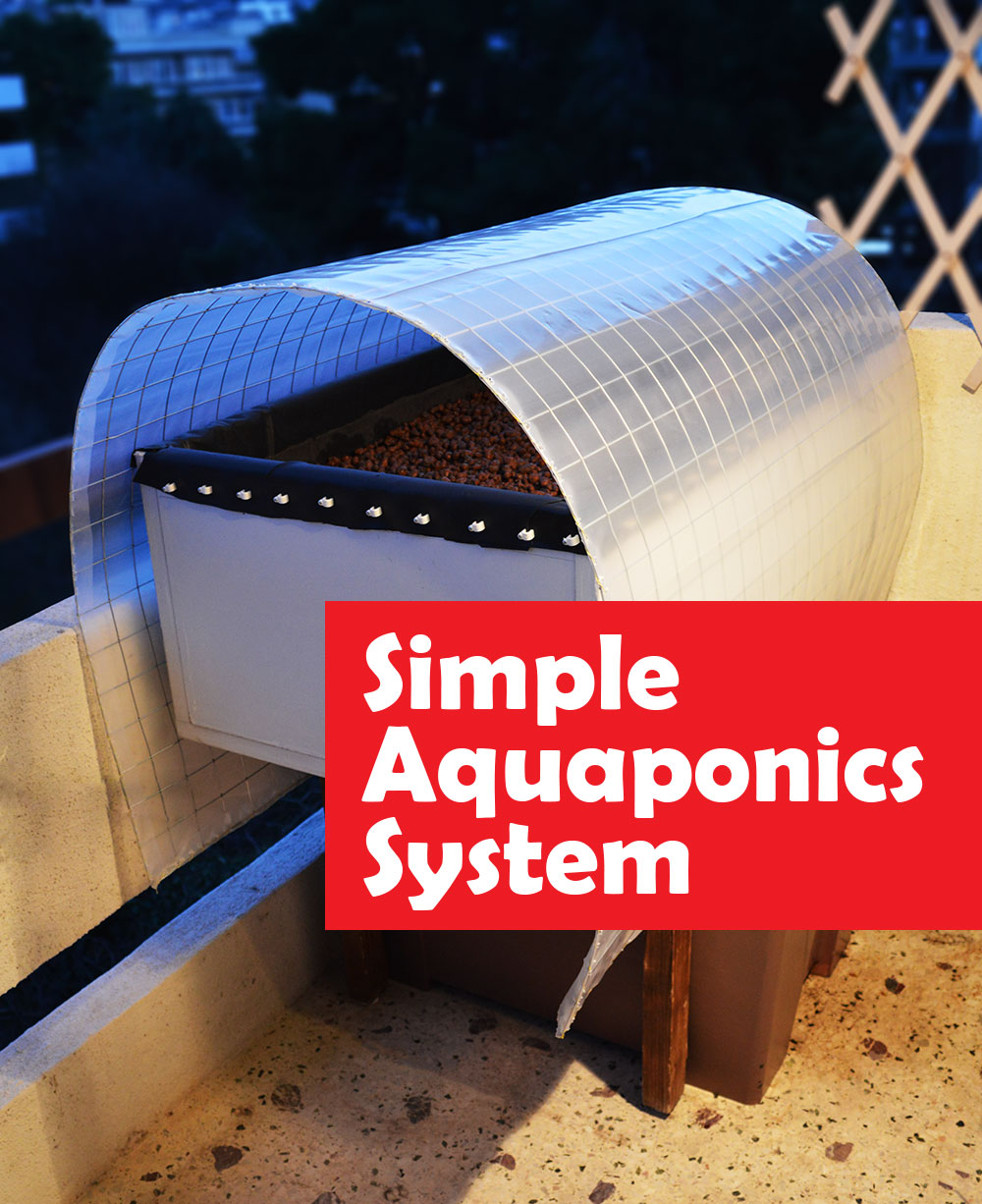 Simple Aquaponics system flood and drain