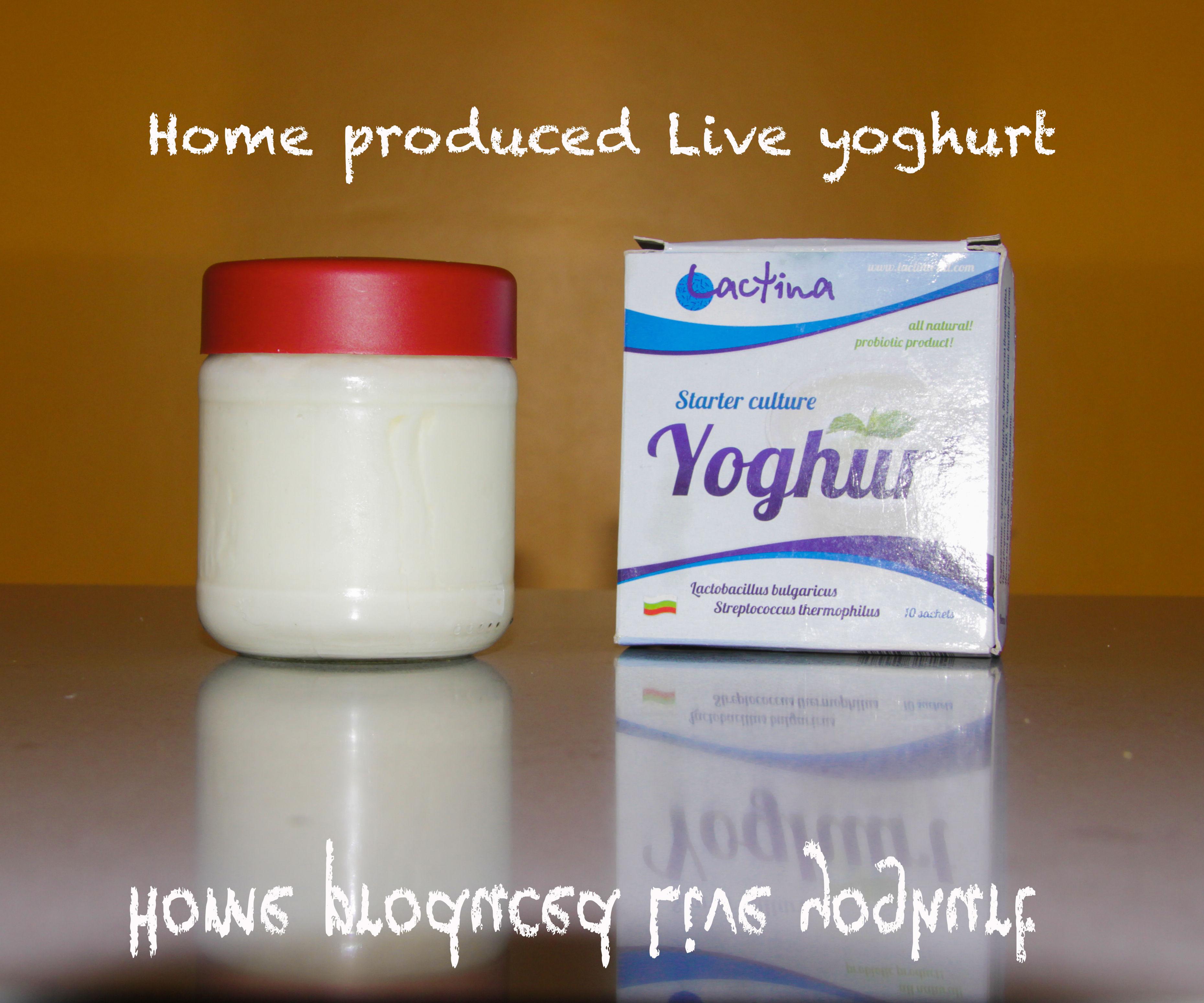 How to Produce Inexpensive Natural Yoghurt/Yogurt