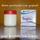 How to Produce Inexpensive Natural Yogurt/Yoghurt