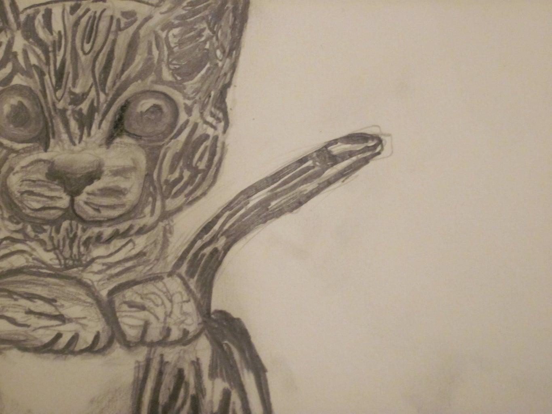 Kitten Pencil Drawing