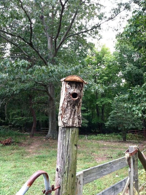 Organic Birdhouse